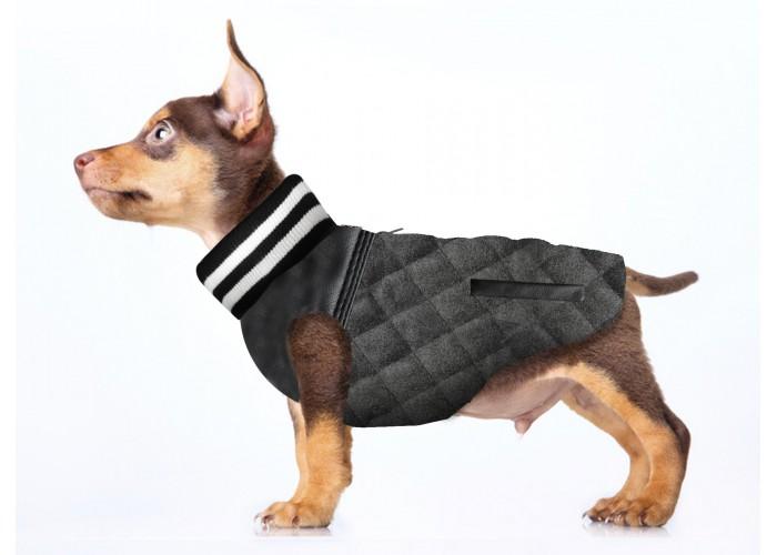 Abrigo para perro Teddy Milk & Pepper Mascoboutique