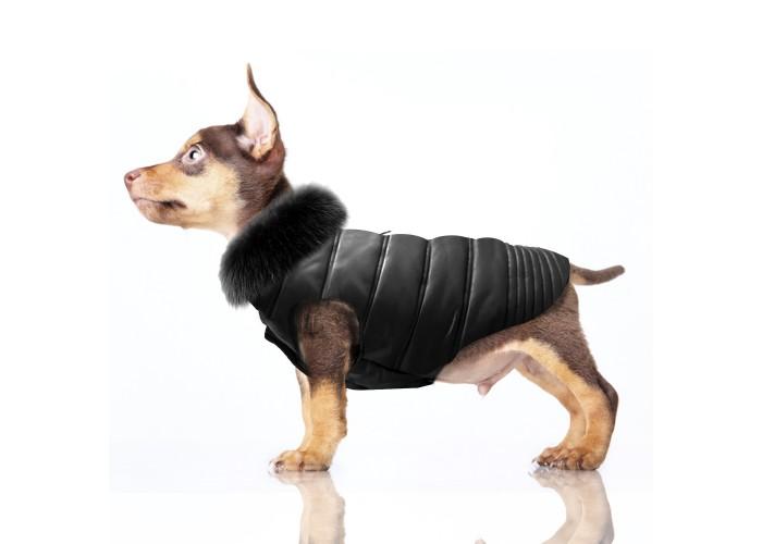 Abrigo para perro Marlon Mascoboutique