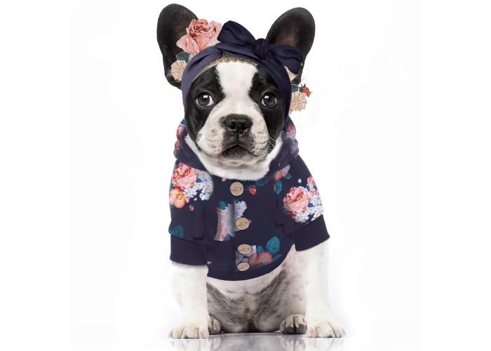Sudadera para perro Derbyshire Milk & Pepper Mascoboutique