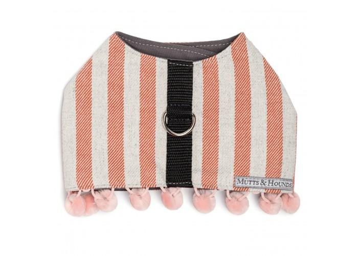 Arnés para perro Orange Stripes Mutts & Hounds Mascoboutique