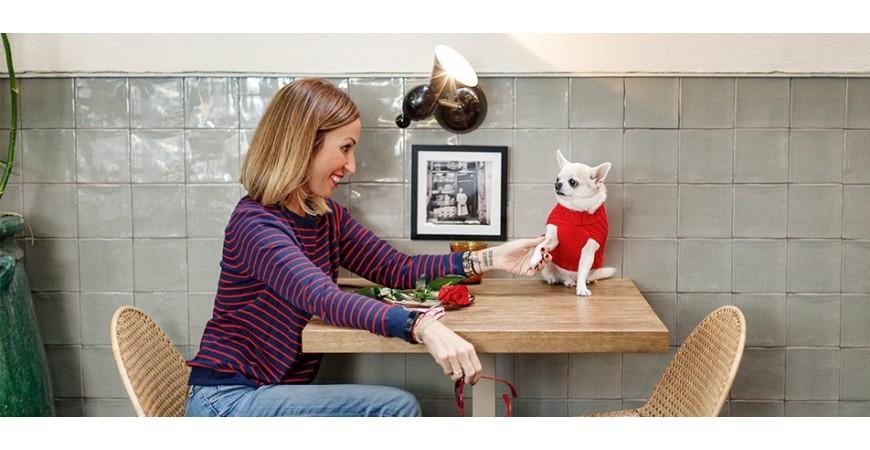 Seis ideas (útiles) para regalar a tu perro en San Valentín